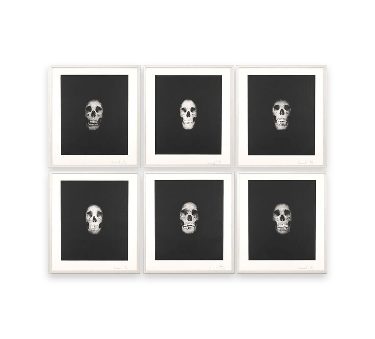 DAMIEN HIRST - I once was what you are... Image